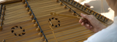 Picture: Hammered Dulcimer Player