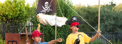 Picture: Pirate Party