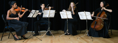Picture: String Quartet